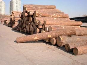 蘭州圓木供應商|蘭州圓木廠家-蘭州原木加工廠