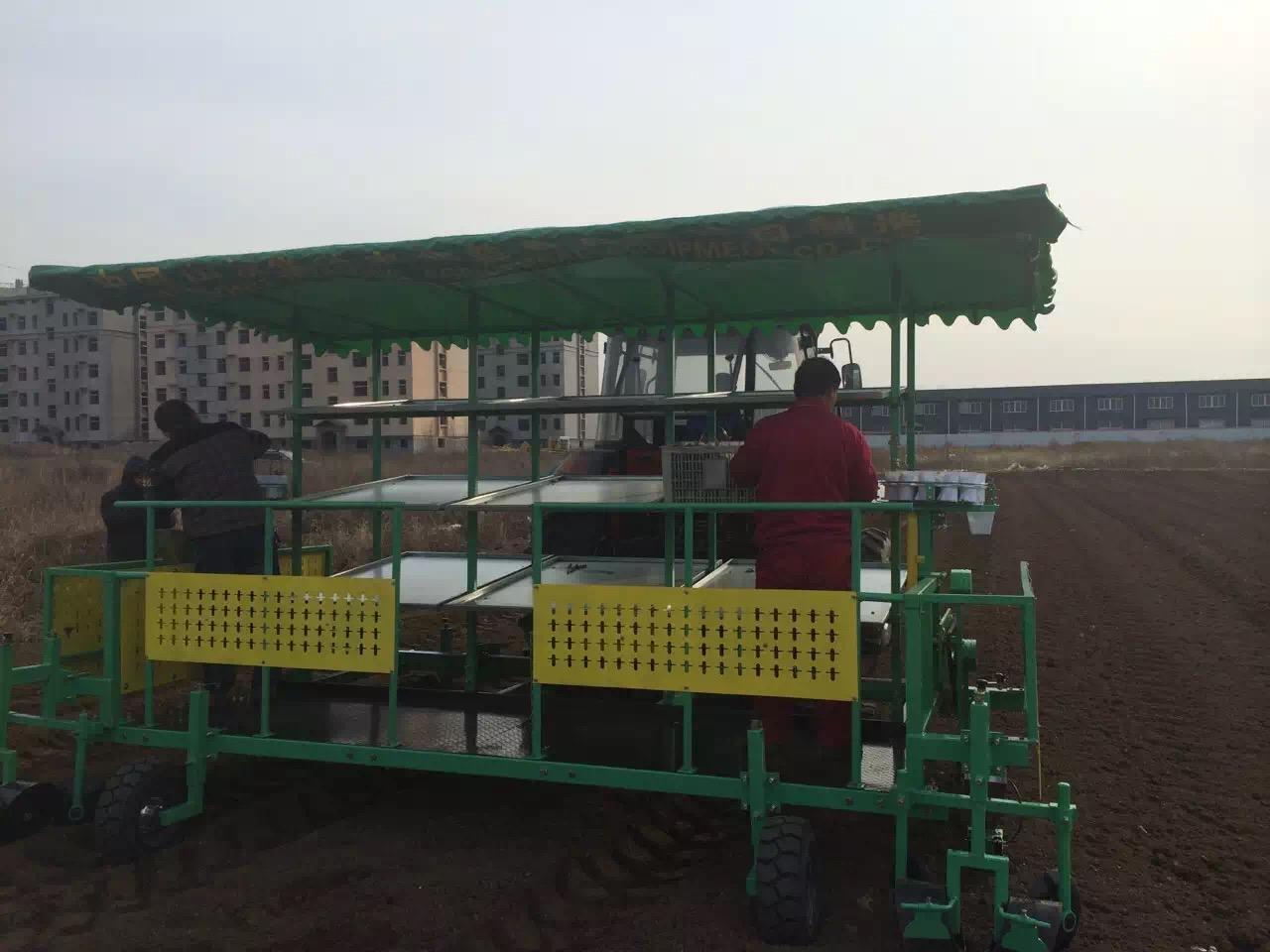 潍坊移栽机厂家推荐 好用的黄芪、白芍、移栽机.桑树苗、玫瑰移栽机