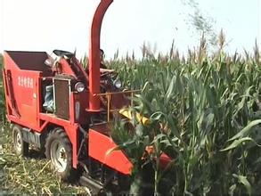 天津二手小麦联合收割机供应商哪里找?天津二手小麦联合收割机价格合理 佳慧